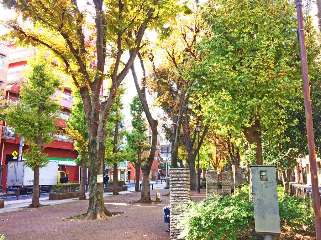 窪町東公園が徒歩1分圏内にございます